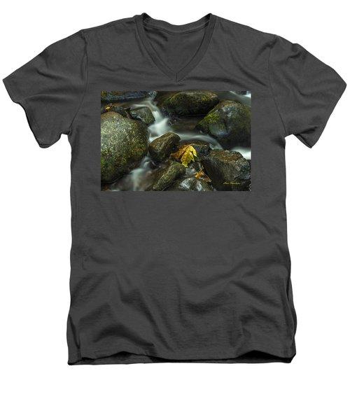 The Leaf Signed Men's V-Neck T-Shirt
