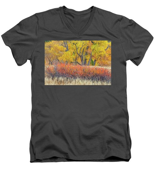 The Leaves That Will Become The Essential Component Of Soil Called Humus  Men's V-Neck T-Shirt