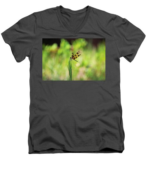 Men's V-Neck T-Shirt featuring the photograph The Liberation by Michiale Schneider