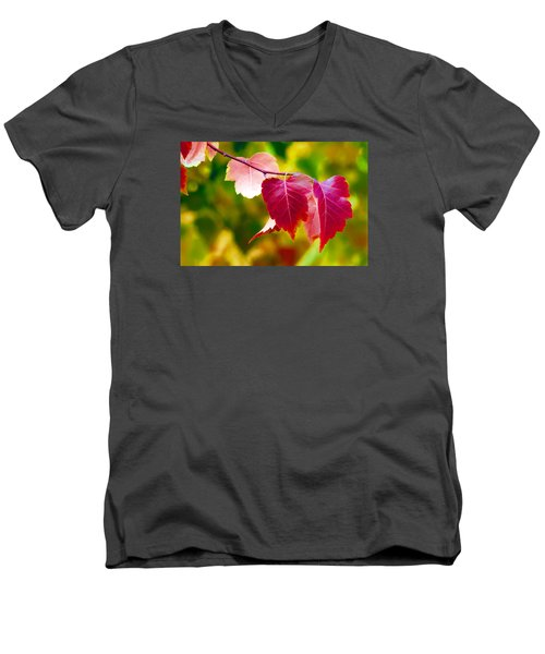 Men's V-Neck T-Shirt featuring the digital art The Little Things That Bring So Much Joy by James Steele