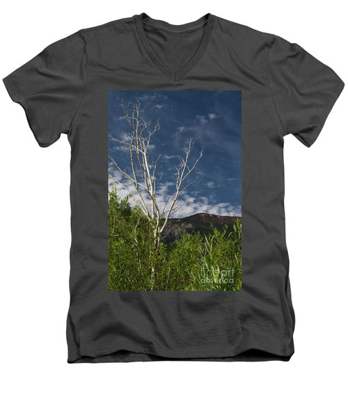 The Lonely Aspen  Men's V-Neck T-Shirt