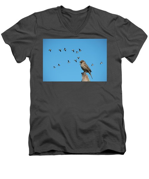 The Lonely Sparrow Men's V-Neck T-Shirt