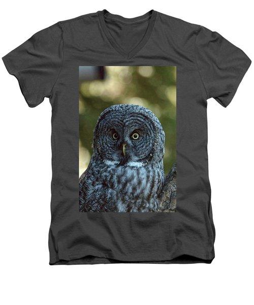 The Look Men's V-Neck T-Shirt