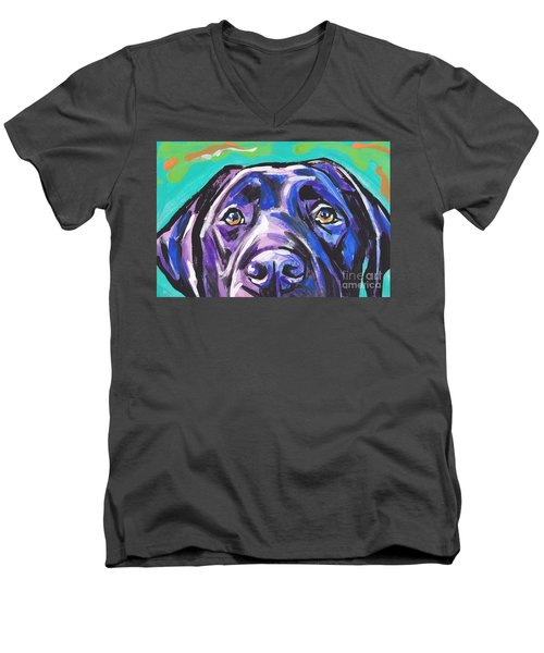 The Look Of Lab Men's V-Neck T-Shirt