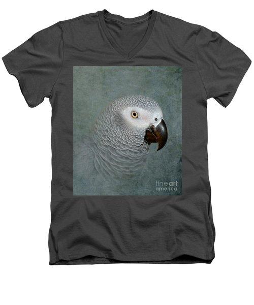 The Love Of A Gray Men's V-Neck T-Shirt