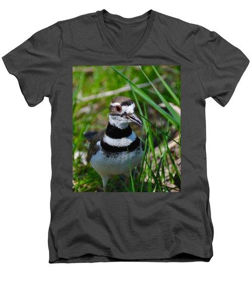 The Luminous Killdeer Men's V-Neck T-Shirt