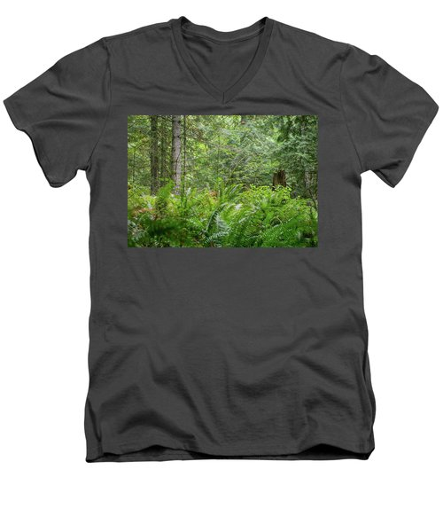 The Lush Forest Men's V-Neck T-Shirt
