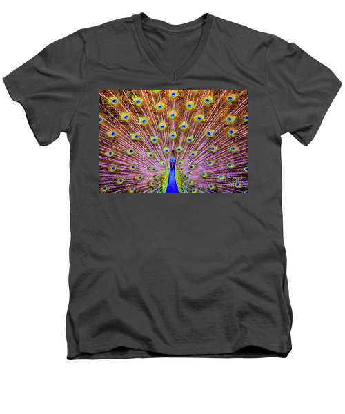The Majestic Peacock Men's V-Neck T-Shirt
