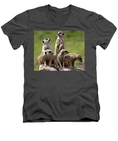 The Management  Men's V-Neck T-Shirt