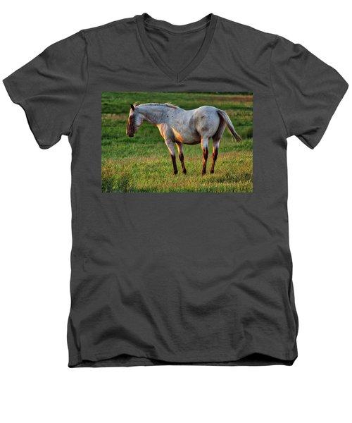 The Mare Men's V-Neck T-Shirt