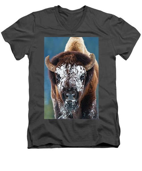 The Masked Bison Men's V-Neck T-Shirt