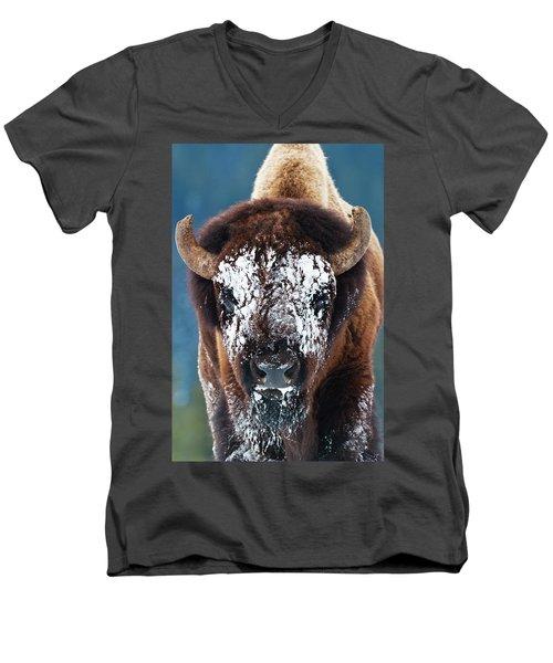 The Masked Bison Men's V-Neck T-Shirt