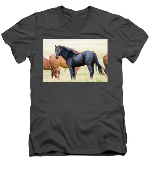 The Master Men's V-Neck T-Shirt