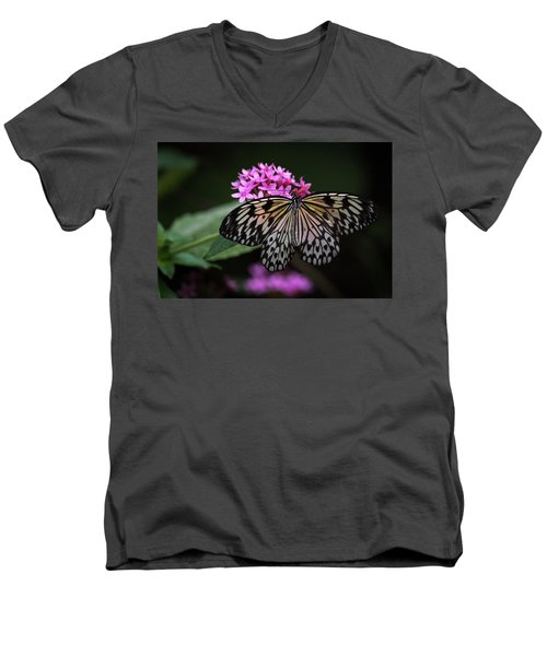 The Master Calls A Butterfly Men's V-Neck T-Shirt