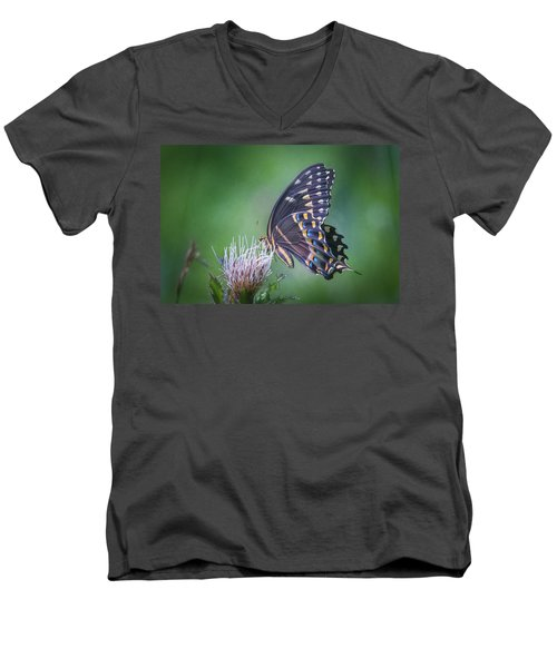 The Mattamuskeet Butterfly Men's V-Neck T-Shirt