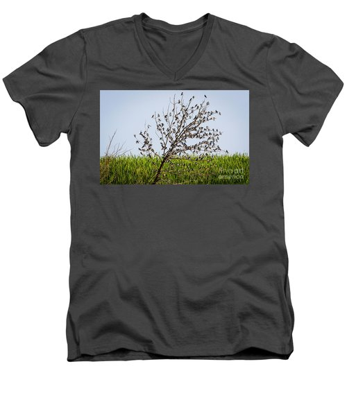 Men's V-Neck T-Shirt featuring the photograph The More The Merrier- Tree Swallows  by Ricky L Jones