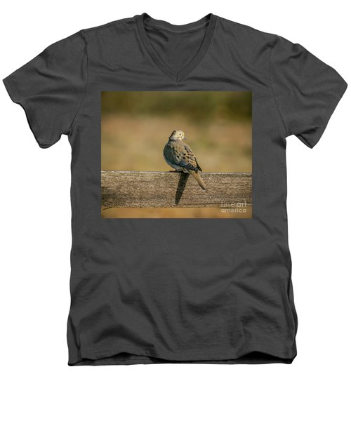 The Morning Dove Men's V-Neck T-Shirt