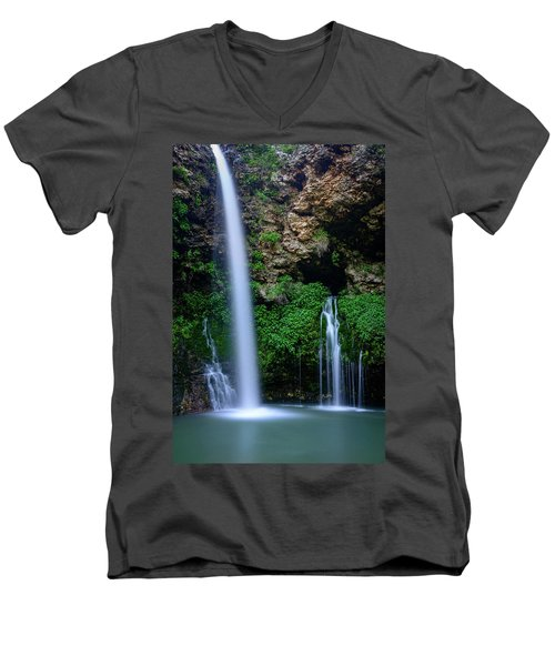 The Natural World Men's V-Neck T-Shirt