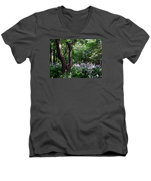 The Old Apple Tree, Fiddlehead Ferns And Wild Phlox Men's V-Neck T-Shirt by Joy Nichols