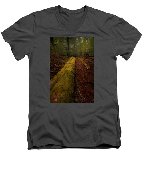 The Old Mossy Trunk Men's V-Neck T-Shirt