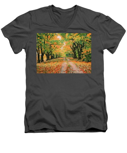 The Old Paths Men's V-Neck T-Shirt