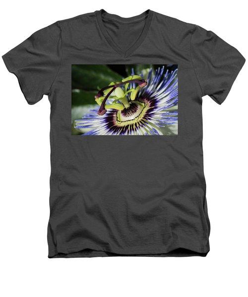 The Passion Men's V-Neck T-Shirt