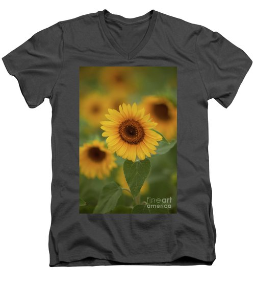 The Patch Of Sunflowers Men's V-Neck T-Shirt