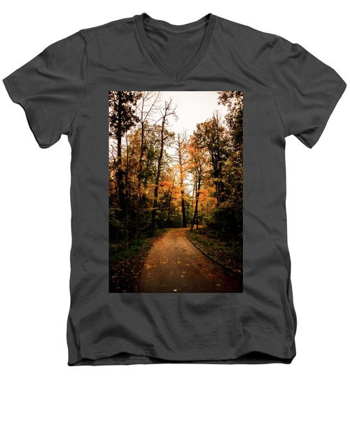 The Path Men's V-Neck T-Shirt by Annette Berglund
