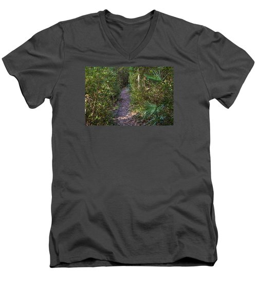 The Path Of Life Men's V-Neck T-Shirt by Kenneth Albin