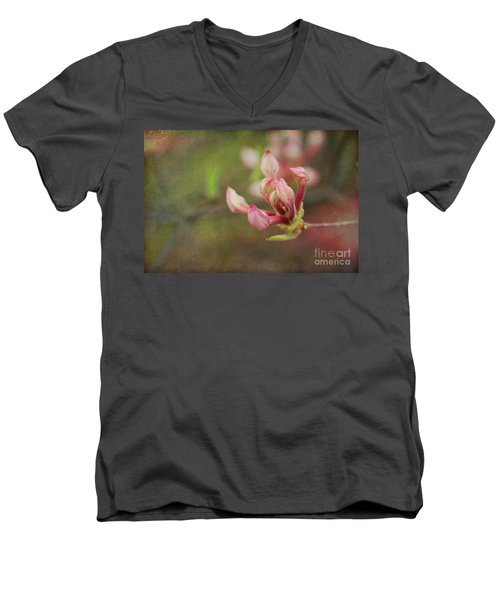 The Pink Claw, Textured - Georgia Men's V-Neck T-Shirt