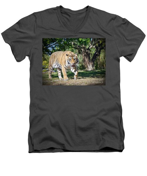 The Prowler Men's V-Neck T-Shirt