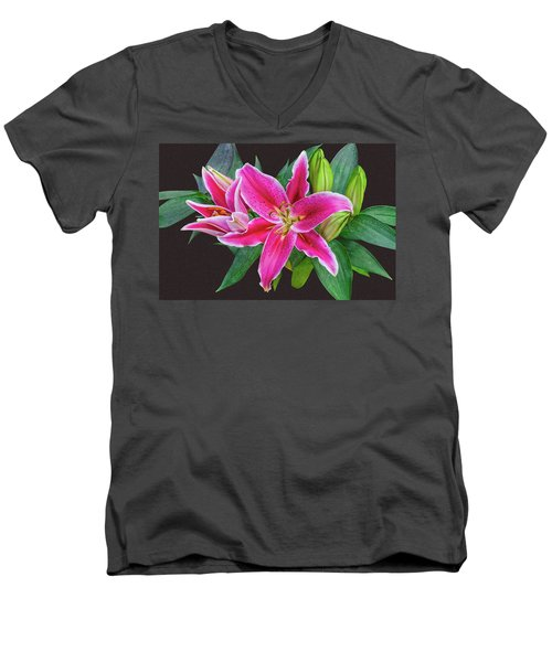 The Pulchritude Of Lady Lily Men's V-Neck T-Shirt