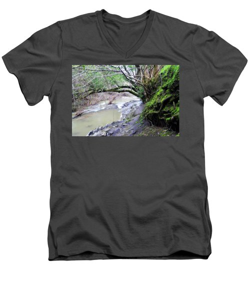 The Quiet Places Men's V-Neck T-Shirt by Donna Blackhall