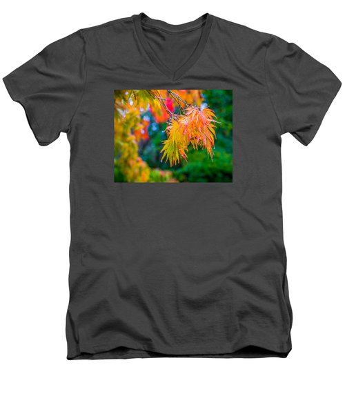 The Rainy Bunch Men's V-Neck T-Shirt by Ken Stanback