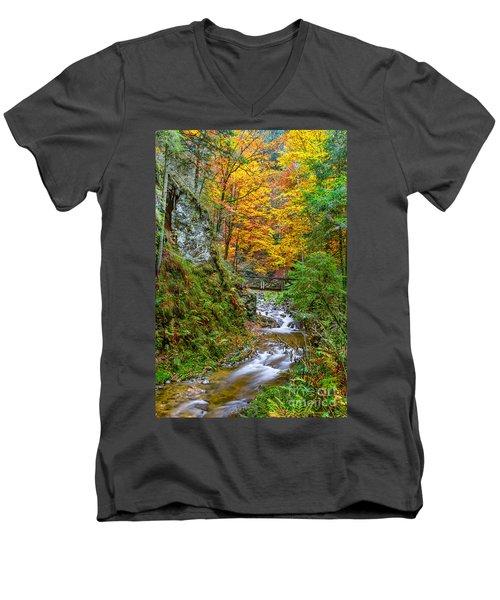 Cascades And Waterfalls Men's V-Neck T-Shirt