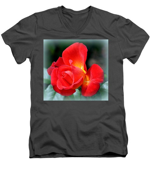 The Red Rose Men's V-Neck T-Shirt