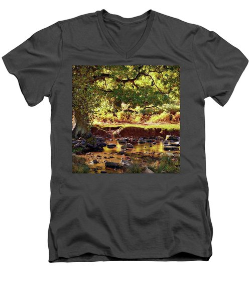 The River Lin , Bradgate Park Men's V-Neck T-Shirt by John Edwards