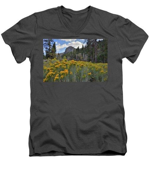 The Road To Mt. Charleston Natural Area Men's V-Neck T-Shirt