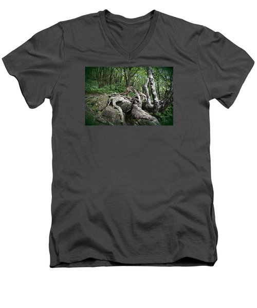 The Root Men's V-Neck T-Shirt by Gary Smith