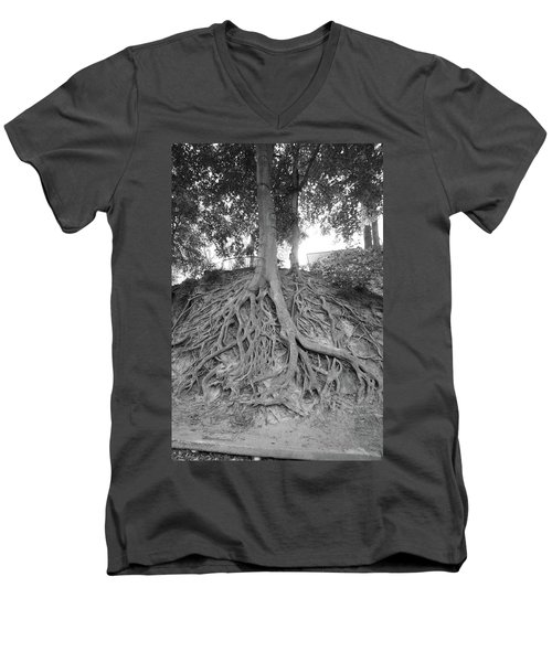 The Root Of It All Men's V-Neck T-Shirt