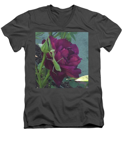 The Rose And Mantis Men's V-Neck T-Shirt