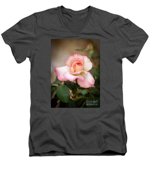 The Rose Men's V-Neck T-Shirt by Janice Rae Pariza