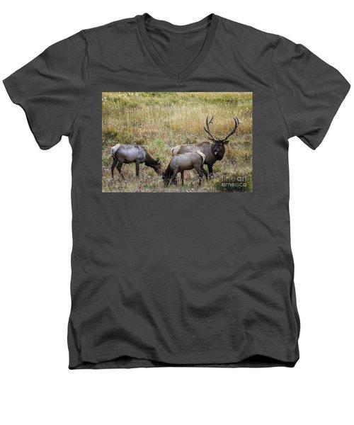 The Rut Men's V-Neck T-Shirt