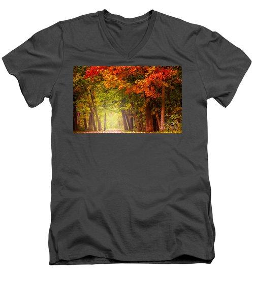 The Secret Place Men's V-Neck T-Shirt by Rima Biswas