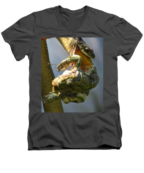 The Serpent And The Frog Men's V-Neck T-Shirt by Lisa DiFruscio