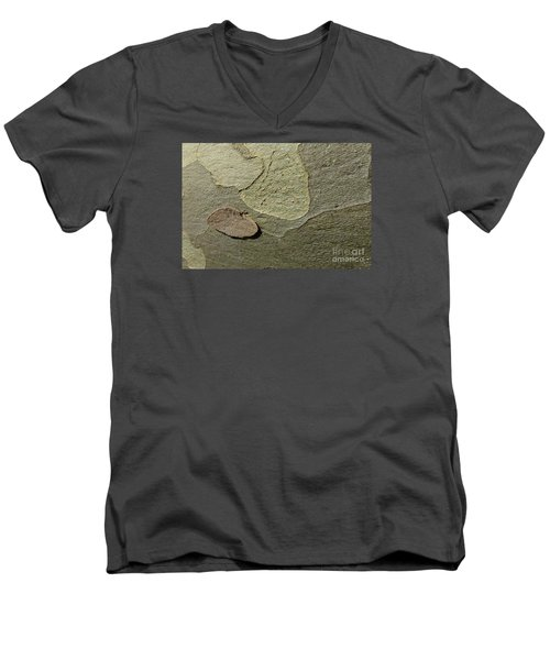 The Skin Of Tree Men's V-Neck T-Shirt