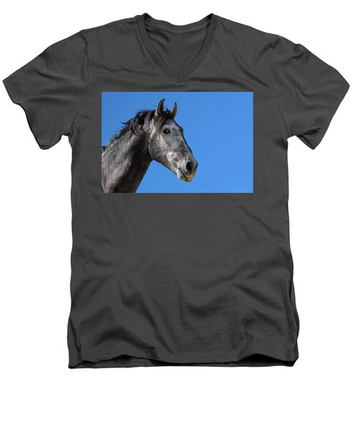 The Stallion Men's V-Neck T-Shirt