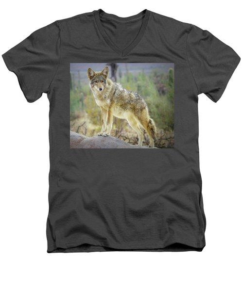 The Stance Men's V-Neck T-Shirt