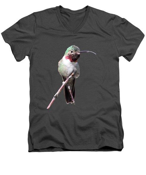 The Taste Of Air Men's V-Neck T-Shirt