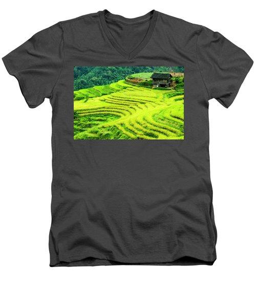 The Terraced Fields Scenery In Autumn Men's V-Neck T-Shirt